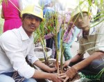 zenitex viral desai dr s. & s. s. ghandhy college world water day world forest day 28